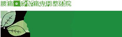 小田原市で唯一の腰痛・ひざ痛専門整体院 葉音~Hanon~